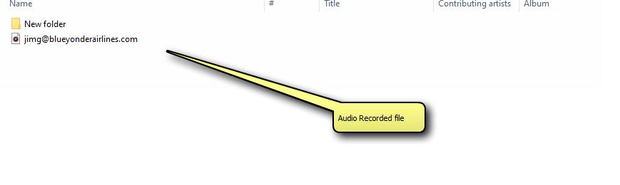 Recorded Audio File