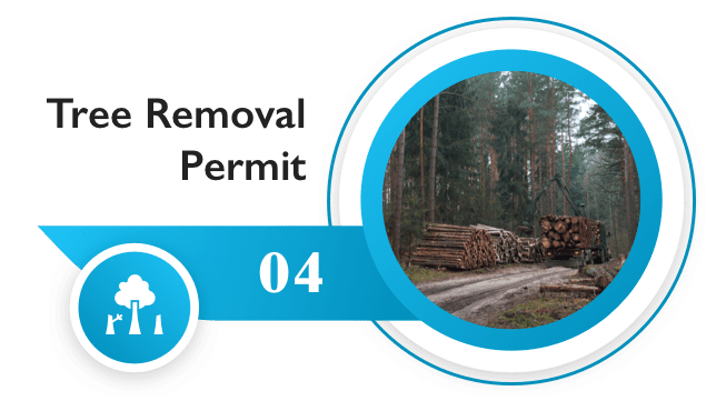 Tree removal permits online in the US