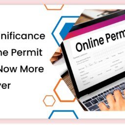 Significance of Online Permit Portal