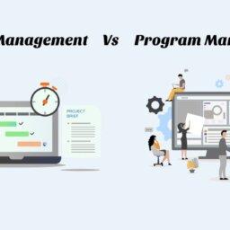 project vs program management
