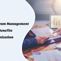 Program Management Process