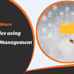 organize and share project files using program management tool