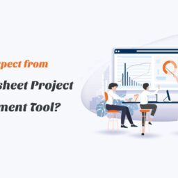 what to expect from a smartsheet project management too